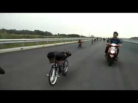 Lajak Johor