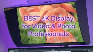 BEST 4K Display for Video & Photo Professionals   BenQ SW271 Monitor