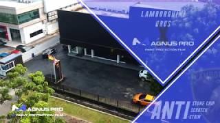 Lamborghini URUS x Magnus Pro Paint Protection Film PPF