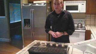 Planting Milkweed Seeds - Part 2
