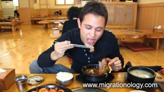 Deliciously Porky Korean Hangover Soup In Seoul (haejangguk 해장국)