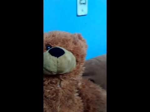 El osos gay