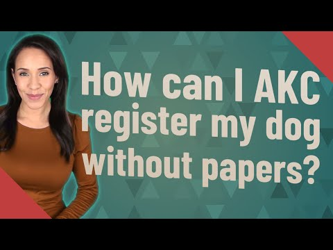 How can I AKC register my dog without papers?