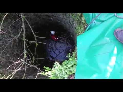 Rescate de dos perros en Villafranca