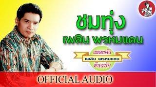 ชมทุ่ง - เพลิน พรหมแดน [Official Audio]