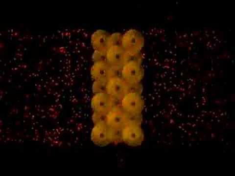 Thí nghiệm phát hiện ra proton