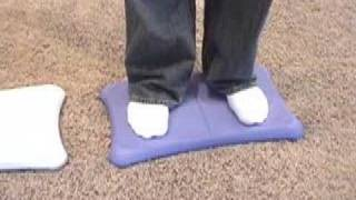 Nintendo wii fit balance board covers