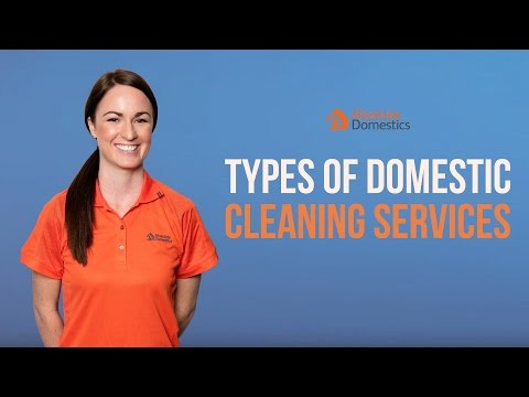What are the Types of Absolute Domestics' Cleaning Services?
