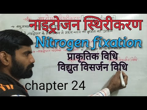 Nitrogen fixation नाइट्रोजन का स्थिरीकरण