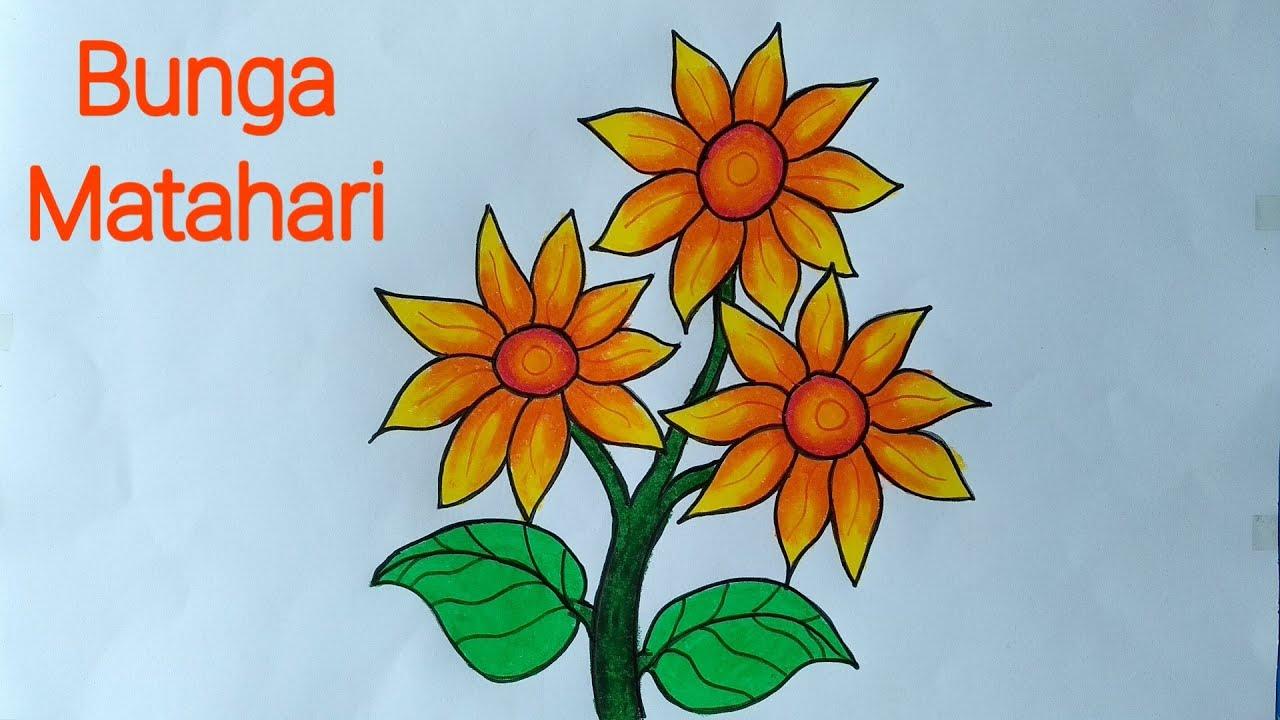Gambar Mewarnai Bunga Matahari Gambar Mewarnai Bunga Untuk