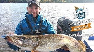 Осенняя рыбалка на Чебоксарском водохранилище. Рыбий жЫр 5 сезон выпуск 20