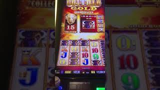 Biggest Buffalo Gold Jackpot $30,000+