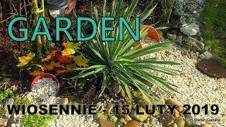 GARDEN - Wiosna w ogrodzie - 15 luty 2019