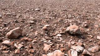 Stoney Ground - Jo and Phil Bates