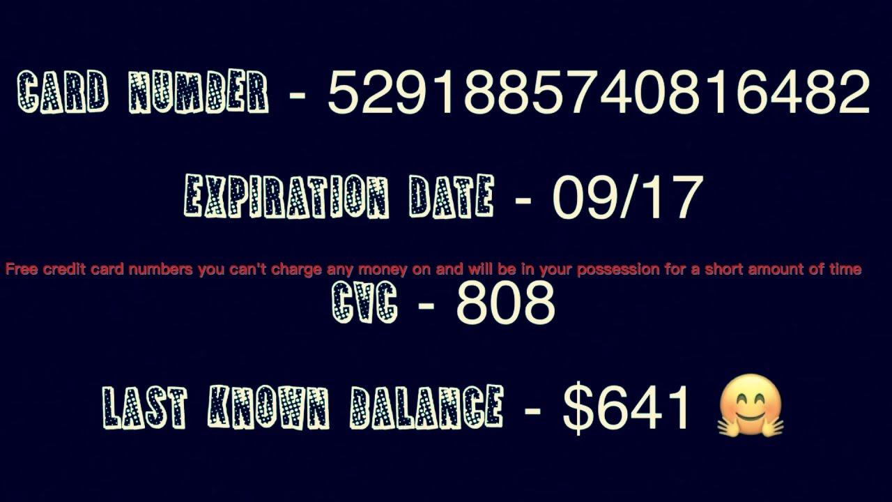 Lažne številke kreditnih kartic za spletna mesta za iskanje-2788