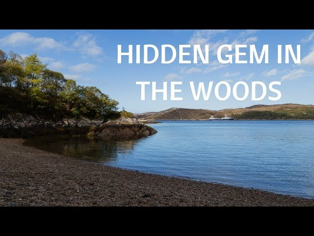 Exploring the hidden gem in Culag Woods in Scotland