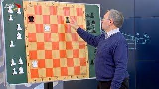 Шахматы. Приёмы эндшпиля #Дидактика