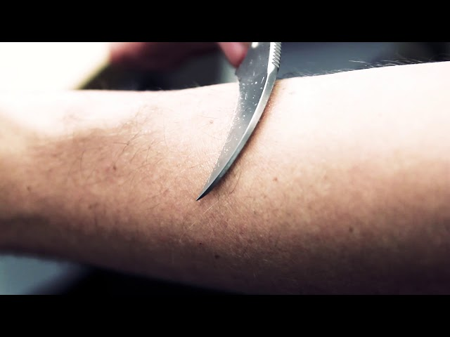 Karambit Sharpness Test! --- DO NOT TRY THIS AT HOME!