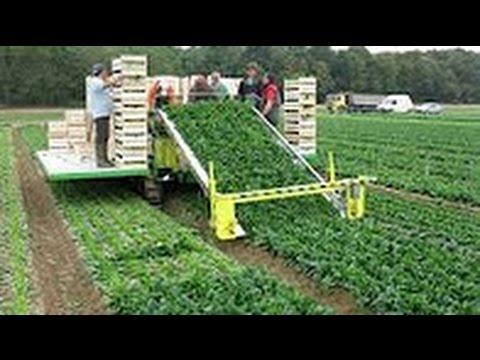Сельхозтехника - AgroXXI