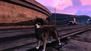 GTA V PC Peyote Dog/ Very High details Gameplay FullHD