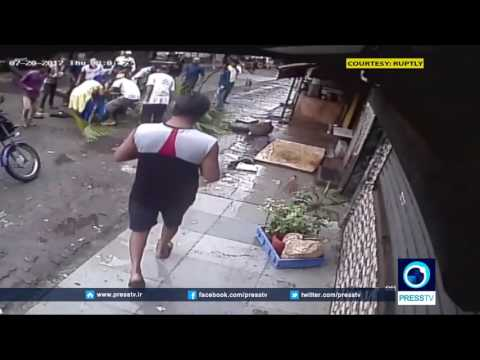 Download Liveleak India Woman Hit By Falling Coconut Tree