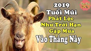 Tuổi Mùi Năm 2019 Tháng Nào Bùng Phát Tài Lộc, Đổi Vận Giàu Sang, Tiền Tiêu Mãi Không Hết