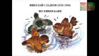 Н.Сладков ''Весенняя баня''