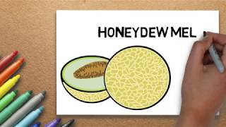 Honeydew Melon Drawing | How to Draw Honeydew Melon Step by Step | Massive Kidszone