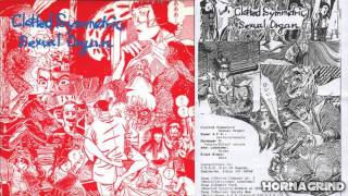 "C.S.S.O. ""Untitled"" (split w/ Vivisection) [1994]"