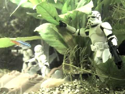 May The Force Be With These Epic Star Wars Aquariums