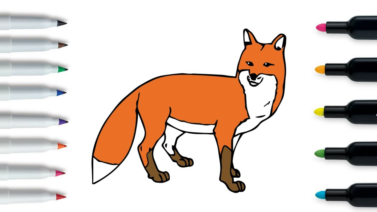 how to draw cute fox learn drawing and coloring animals
