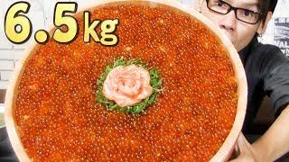 """【大食い】禁断の大食い。筋子から作る""""自家製イクラ丼""""~総重量6.5㎏~"""