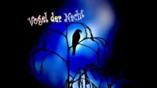 Eberhard Lange - Vogel der Nacht