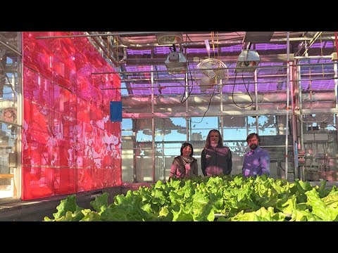 Solar greenhouses electricity generators use selective wavelength photovoltaic systems WSPV