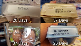 EXPOSED! How OLD are Store Bought Eggs?!?