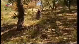 Morangos com açucar 3 - episódio 1