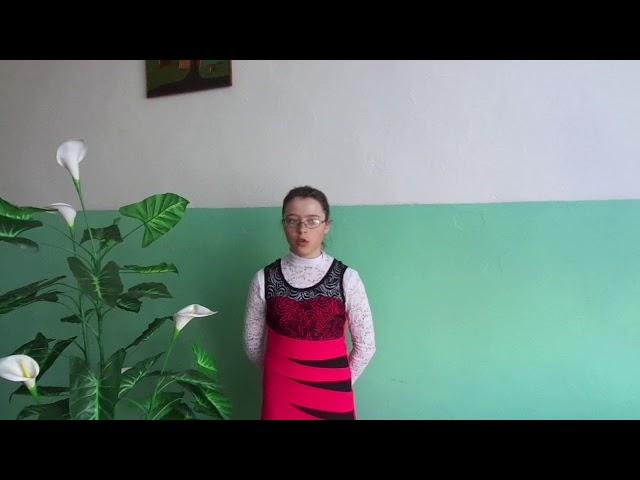Изображение предпросмотра прочтения – ТатьянаСтародубцева читает произведение «Весна» А.Н.Майкова