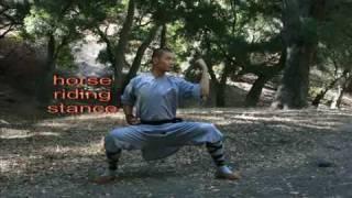 Shaolin Wu Bu Quan - Five Steps training form