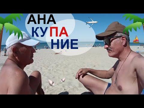 Вопрос: Как далеко от побережья летает альбатрос?