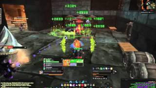 Braufest 2011 World of Warcraft