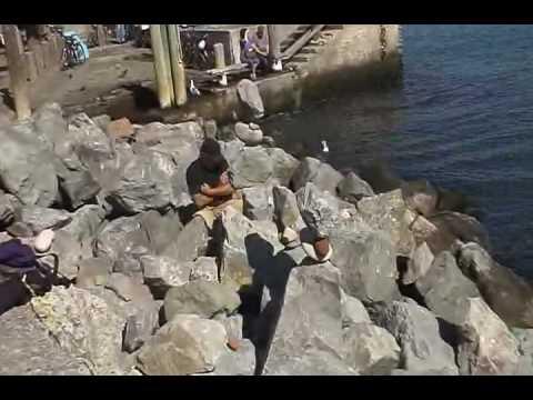 San Francisco rock stacking