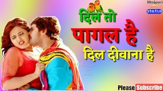 dil to pagal hai dil deewana hai / whatsapp status khesari lal / by Bhojpuri hot status / Aditya raj
