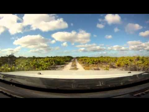 """The Essential Christmas Island Tour.  London by bike and """"the bush"""" by auto."""
