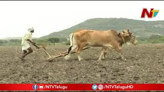India Records Second Lowest Rainfall in 65 Years   Monsoon Rains   NTV