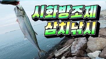 시화방조제 삼치낚시 / 산란삼치가 들어왔습니다 / 메탈지그 삼치낚시 방법 / Spanish mackerel fishing
