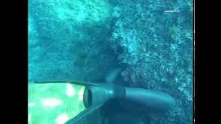 Подводная охота, дайвинг, фридайвинг(Подводная охота, обучение видео. . http://apnos.kiev.ua/. Практика подводной охоты.Речная, морская, океаническая подв..., 2014-06-13T11:10:30.000Z)