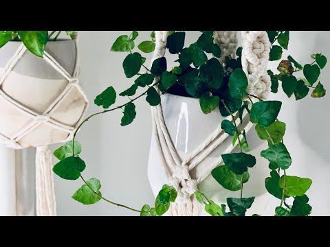 macrame-plant-hanger- -diamond-pattern- -intermediate-tutorial