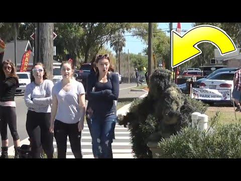 FredSpecialtv vs Mr. Bushman vs Creepy Bushman!