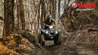 2018 Yamaha Kodiak 450 - Real World Capability