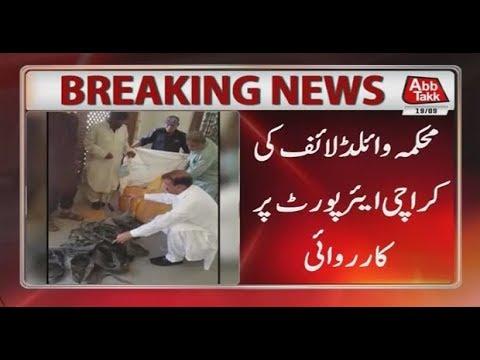 Karachi: Wild Life Department Action at Airport